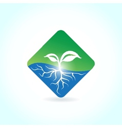 Green ecological banner with green leaves vector image