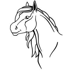 horse horse head portrait - linear picture vector image