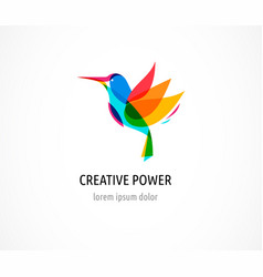 hummingbird abstract bird colorful icon vector image