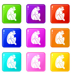 Orangutan icons 9 set vector