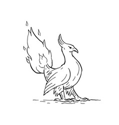 phoenix burning tail drawing vector image