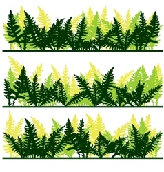 Set of ink drawing fern leaves vector image vector image