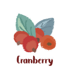 Cranberry forest berry vector