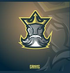 king mascot vector image