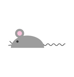 laboratory mouse isolated icon vector image