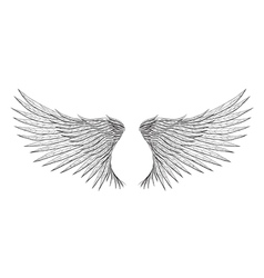 Tattoo wings vector