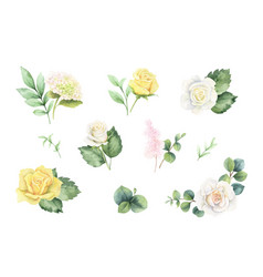 watercolor set with green eucalyptus leaves and vector image