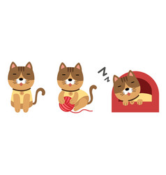 cute cat set on white background vector image vector image