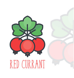 red currant icon over white in flat style vector image vector image