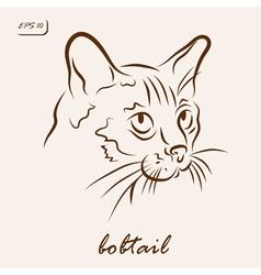 Bobtail vector