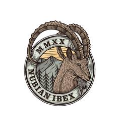 Nubian ibex goat badge logo design animal vector