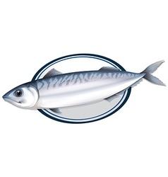 Sardine fish on a plate vector