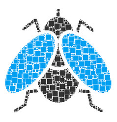 Fly insect collage of squares and circles vector
