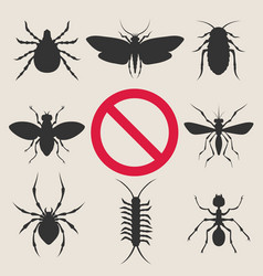 home insect pests vector image