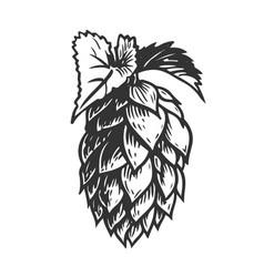 hop black white vector image