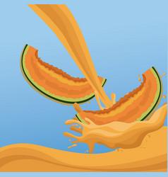 melon fruit splash on blue background vector image