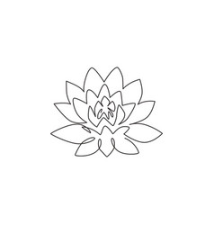 one single line drawing beauty fresh lotus vector image