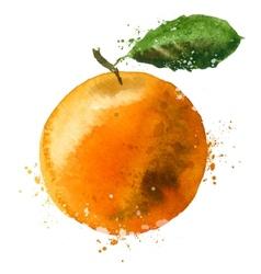 Orange logo design template fruit or food vector