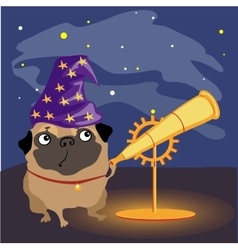 scientist dog pug watching stars vector image