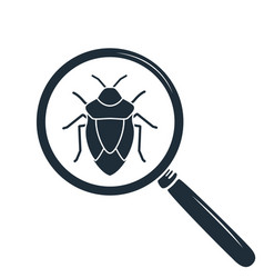 Beetle under the magnifying glass insect icon vector