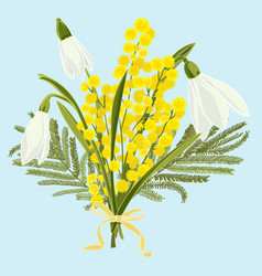 spring floral background with beautiful snowdrops vector image