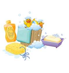 Things inside the bathroom vector image vector image