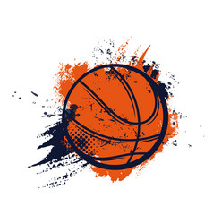basketball ball sport basket and hoop streetball vector image