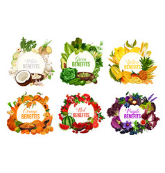 detox color diet icons with fruits and vegetables vector image