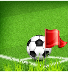 Green playing field ball red flag 10 v vector