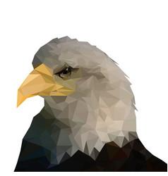 isolated bald eagle on white backgroundlow poly vector image