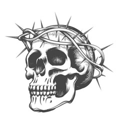 skull in thorns wreath vector image