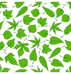 Spring green leaves seamless pattern background vector image