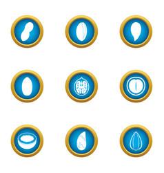 useful nut icons set flat style vector image