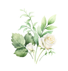 Watercolor clipart with green eucalyptus vector