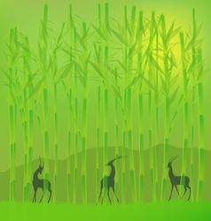 bamboo grove vector image vector image