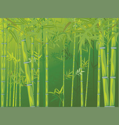 bamboo forest scene vector image