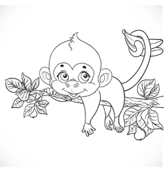 Cute monkey lazily lying on a branch and holds the vector