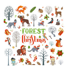 forest christmas vector image