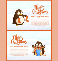 greeting card penguins with socks and gift vector image