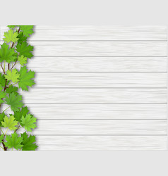 Maple tree branch on wooden background vector