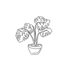 one single line drawing beauty potted tropical vector image