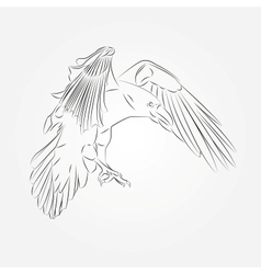 Sketch of crow in vector