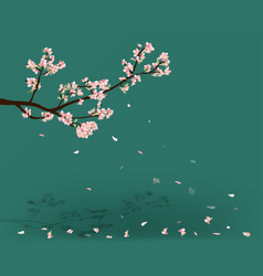 watercolor sakura frame background with blossom vector image