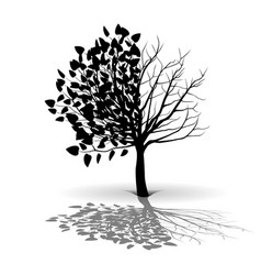plant tree silhouette vector image vector image