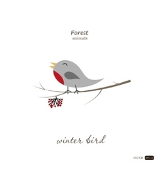 Winter bird in cartoon style on white background vector image vector image