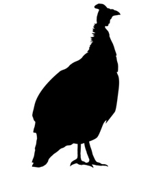 silhouette of guinea fowl vector image vector image