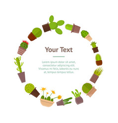 Cartoon cactus plant in pots banner card vector