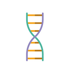 colours dna icon on white background vector image