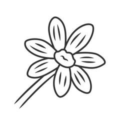 Coreopsis linear icon rudbeckia garden flower vector
