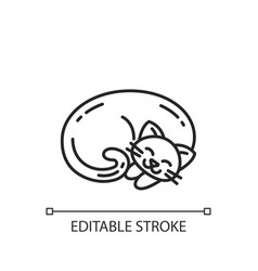 Curled up cat linear icon vector